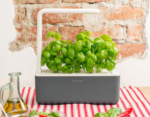 smart garden click and grow